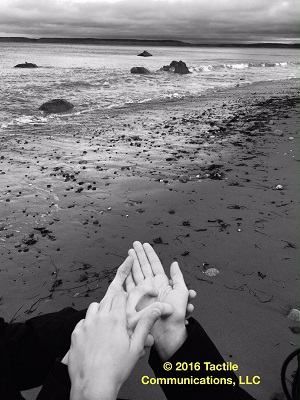 Image description: black and white image of the water at the beach with five boulders emerging from the water. Towards the bottom of this b&w image, are a pair of hands using ProTactile (PT). The one pair of hands is displaying the positions of the rocks in the water on the other person's hand. *Image © 2016 Tactile Communications, LLC